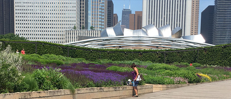 ChicagoKids com - 120+ FREE Family Friendly Things to Do
