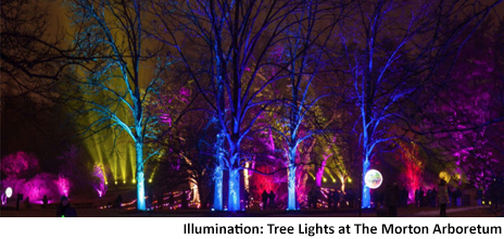 This yearu0027s holiday events are already getting underway and the season features many holiday lights events! Many kick off with tree lighting ceremonies ...  sc 1 st  Chicago Kids & ChicagoKids.com - 2017 Chicago Holiday Lighting Events - Light It Up! azcodes.com